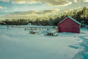 Simsbury snow