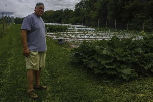 Stillwater Farm