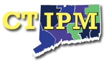 CT IPM Logo